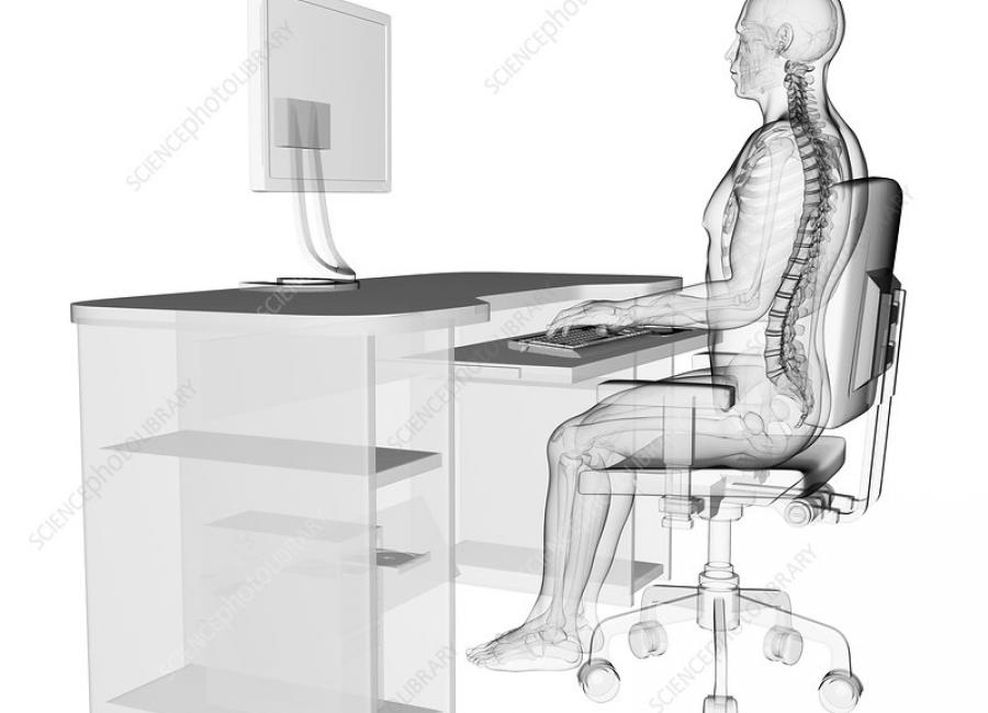 What is posture?